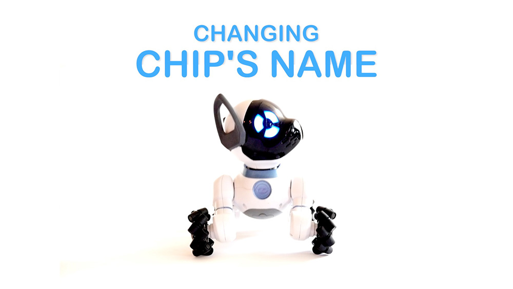 How to change the name of your CHiP